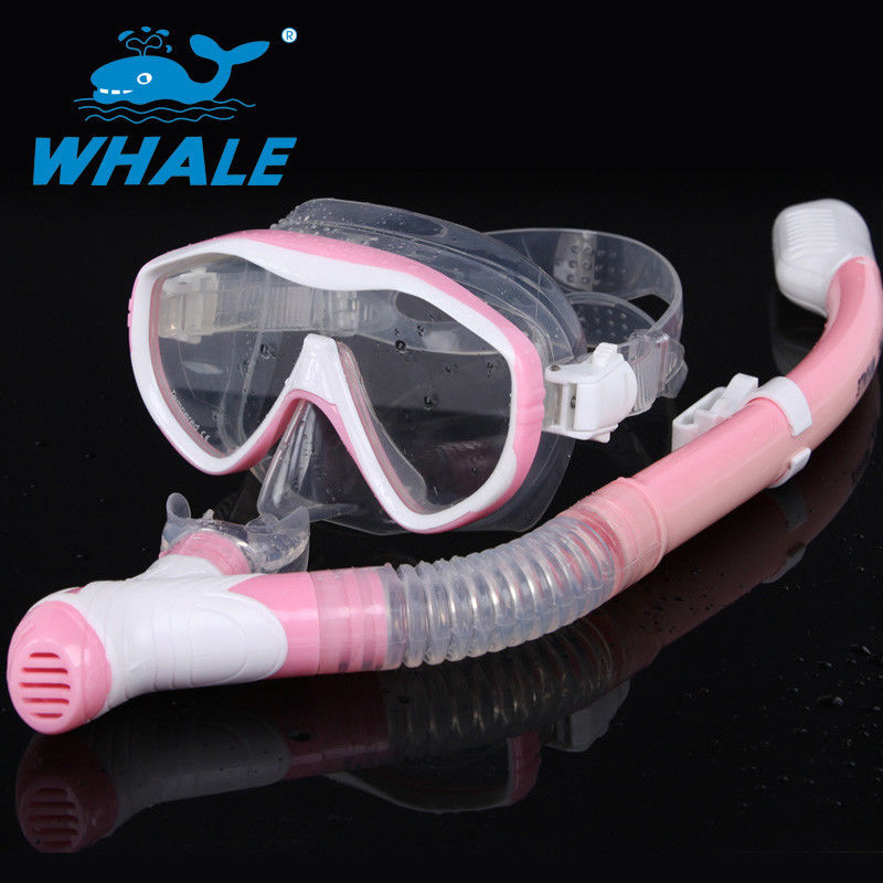Adults Dive Mask Snorkel Set With Panoramic Diving Mask & Dry Top Snorkel